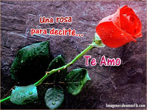 rosaspostales-bonitas-con-rosas-para-amor