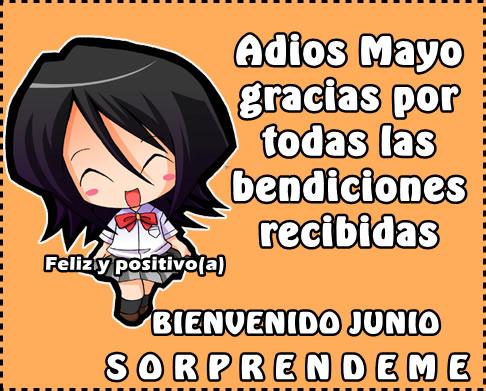 adios mayo
