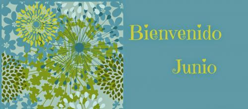 juniohola19