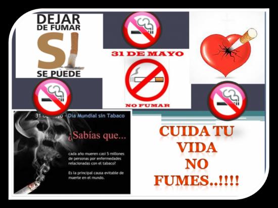 tabaco5.jpg9