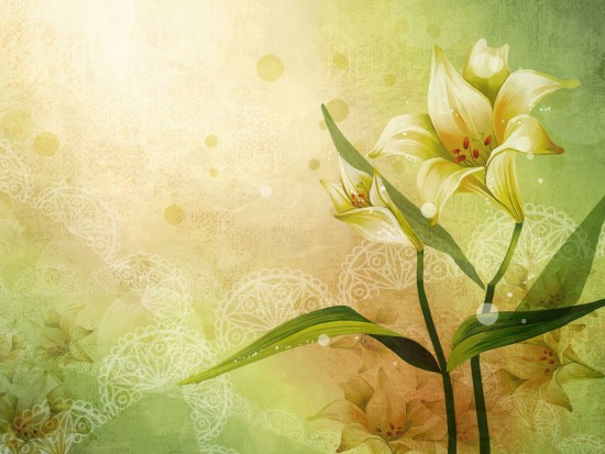 flores-normal