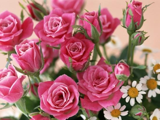 floressss