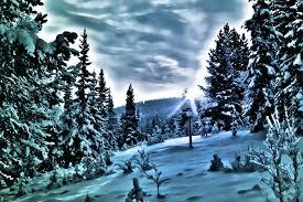 inviernopaisaje