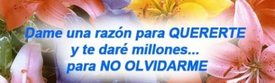 zzzzzzzzzzzzmensajes-de-amor-570x172_c