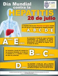 hepatitis.jpg11