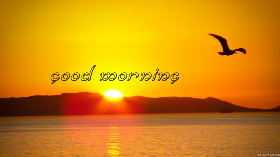 Morning-2014-Sunrise-Wallpaper