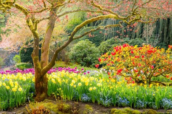 primaverapaisajes