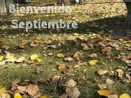 septiembrebienvenido.png3