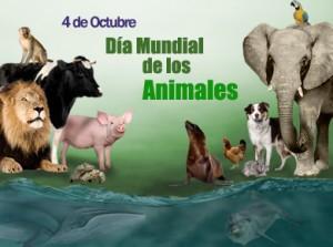animales.jpg3