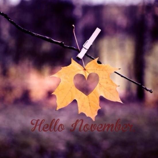hello-noviembre