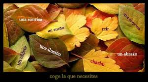 images (13)