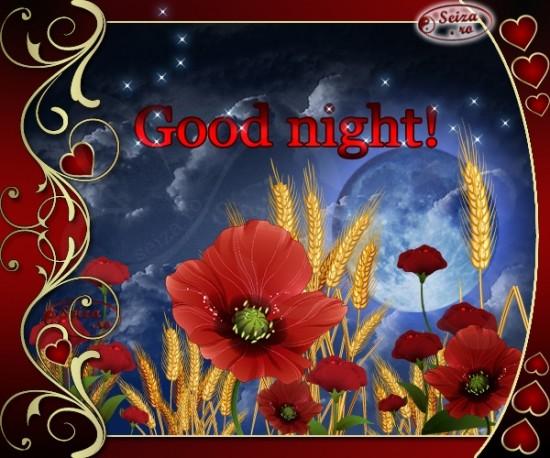 nocheingles