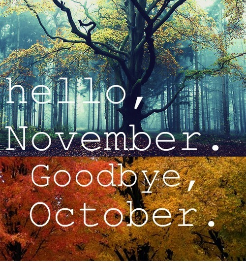 noviembregoodhello3