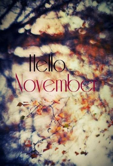noviembrehello1