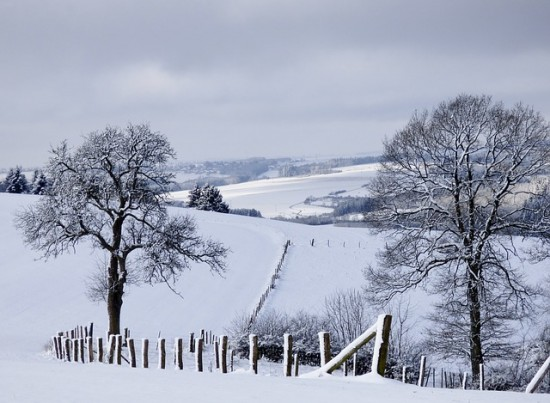 inviernoblynegro.jpg1