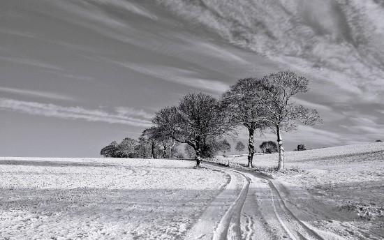 inviernoblynegro.jpg3
