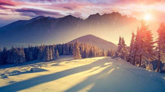 inviernopaisajewall.jpg8