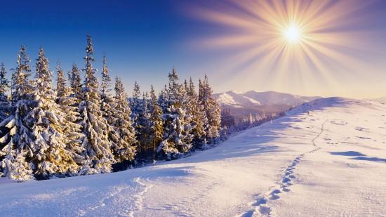 inviernopaisajewall5