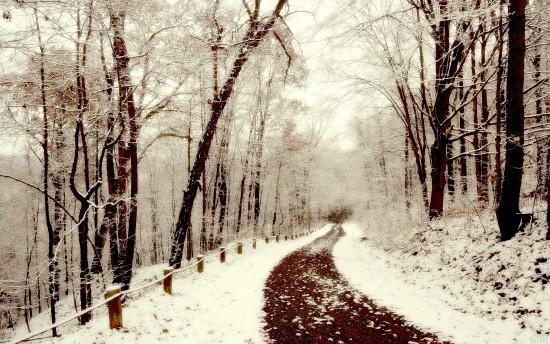 inviernopaisajewall7