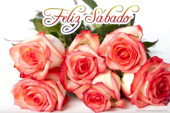sabado2-imagenes-con-mensajes-de-feliz-sabado-y-rosas