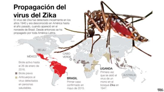 zika-infografía