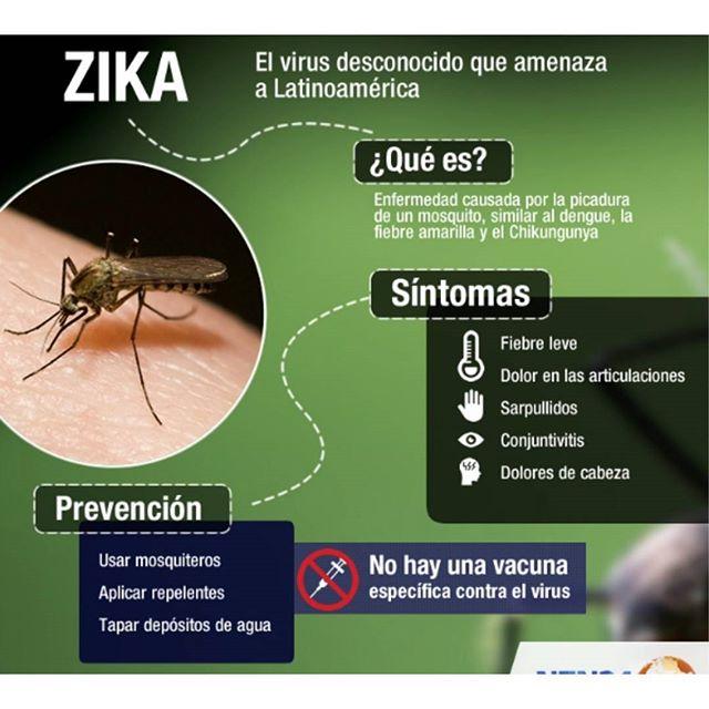 zika.html1.jpg1