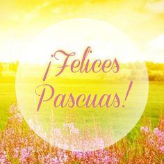 Feliz Pascua De Resurreccion Imágenes Tarjetas Frases