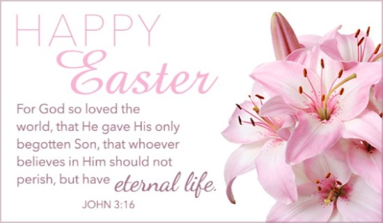 16330-happy-easter-pink-lily