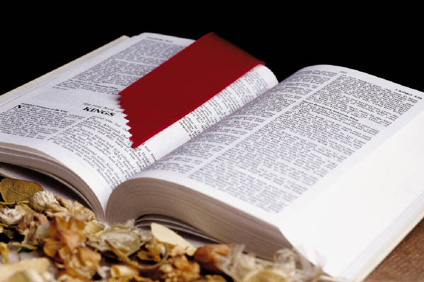 biblia_dialibro2