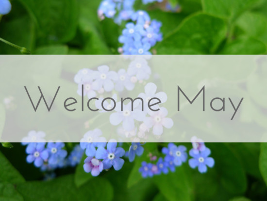 welcome_may-1024x768