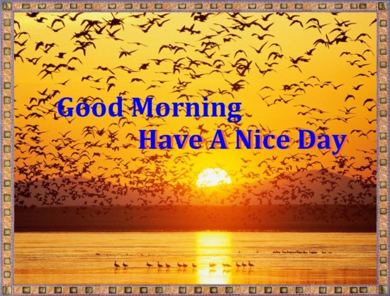 Feliz cumpleanos que tengas un lindo dia en ingles