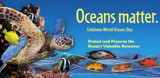 Oceans-Matter-Celebrate-World-Oceans-Day-Protect-And-Preserve-The-Oceans-Valuable-Resources