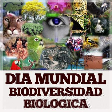 biodivdia_mundial_biodiversidad