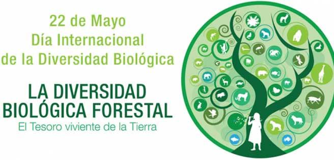 biodiversidad4da5b6425758a8aea7a0a8d93f29a9b
