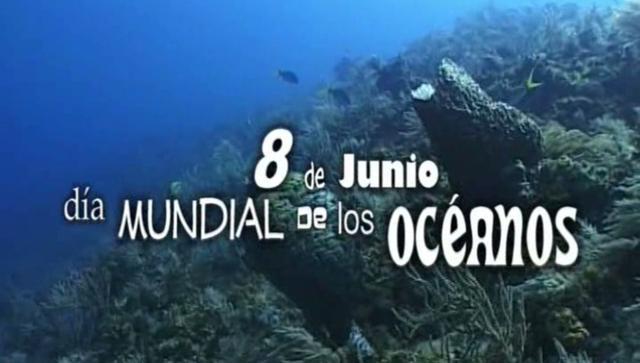 dia-mundial-de-los-oceanos-2013-57640346_640