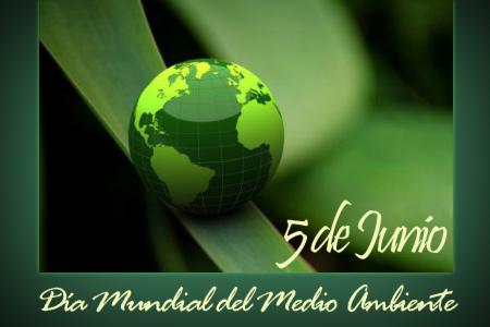 dia-mundial-medio-ambiente-2013