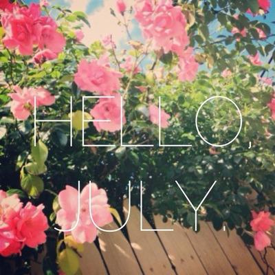 july-hello-rose-pink-flowers-floral-fleuri-nature-Favim.com-774076