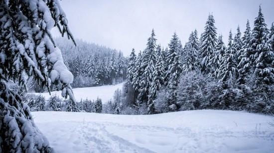 winter-273403_640