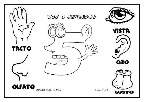 Imágenes educativas para niños escolares: 50 Tarjetas imprimibles