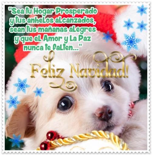 Mascotas-Navideñas-2
