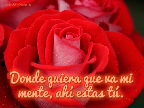 Imágenes De Amor Con Frases Besos Y Rosas Para Tu Novi At