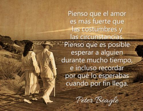 frase-sobre-el-amor-peter-beagle