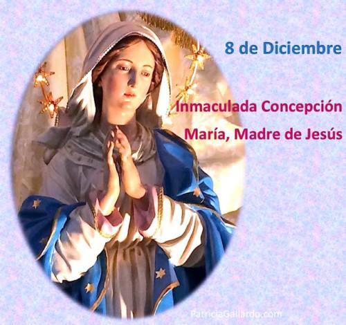 8-de-diciembre-dia-de-la-inmaculada-concepcion-de-maria-madre-de-jesus-metafisica-miami