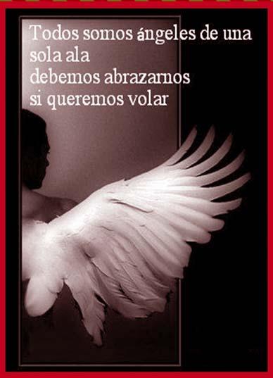 imágenes de ángeles con frases alas plumas blancas