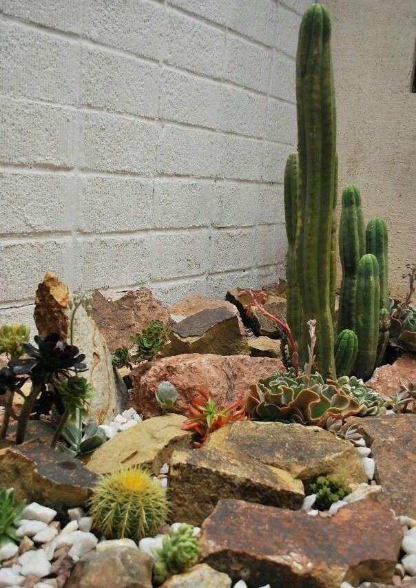 Imágenes e ideas de decoración de jardines