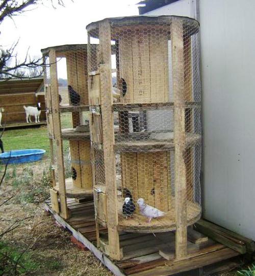 Ideas nuevas de gallineros con material reciclado - Casa in legno fai da te ...