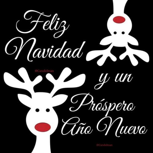 Frases Para Felicitar Las Fiestas De Navidad Y Ano Nuevo.Imagenes Con Frases De Ano Nuevo 2019 Para Whatsapp