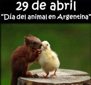 Día Del Animal 29 De Abril Argentina Imágenes Frases