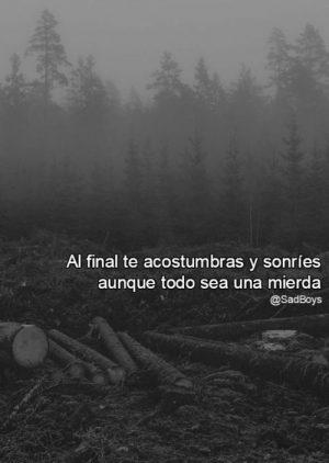 Frases Tumblr Tristes Y De Desconsuelo